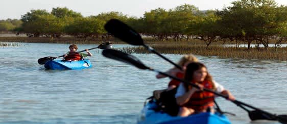 Mangrove Kayaking Abu Dhabi Tickets