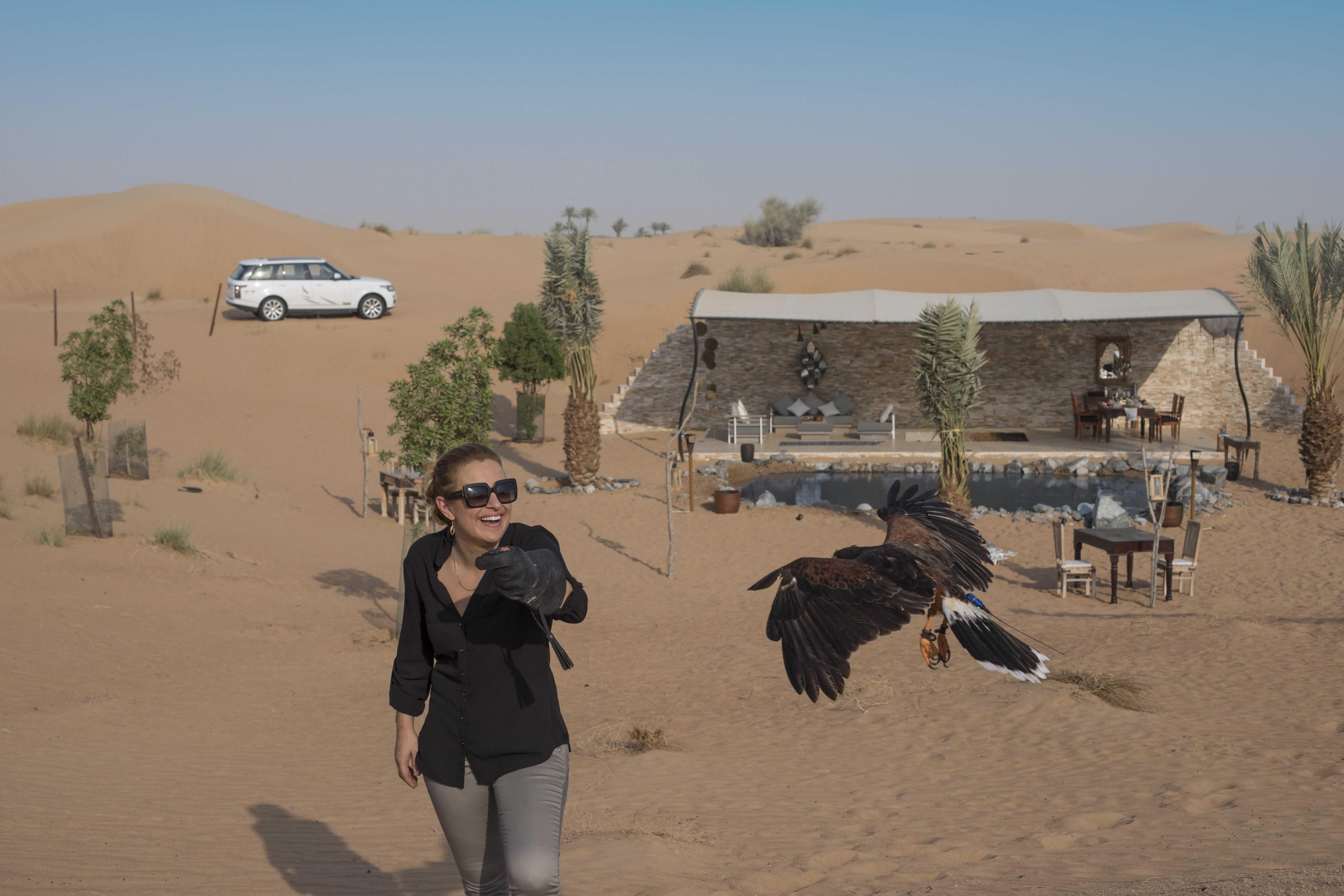 Platinum Falconry and Wildlife Safari