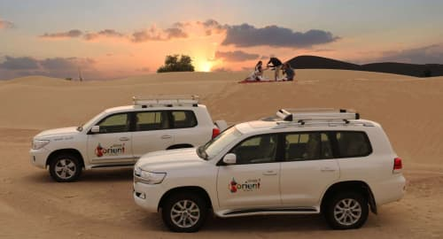 Sunrise Desert Safari with Falcon Show and Breakfast