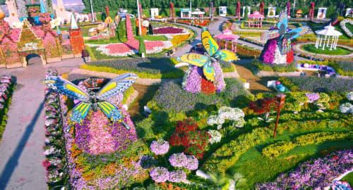Miracle Garden Dubai Tickets