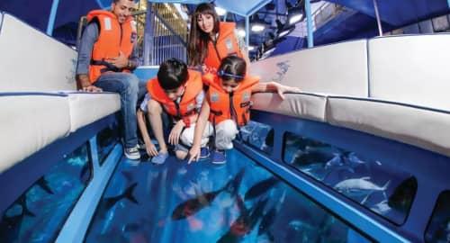 Dubai Aquarium Tickets