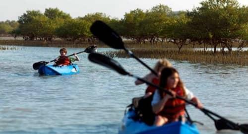 Mangrove Kayaking Abu Dhabi Tickets