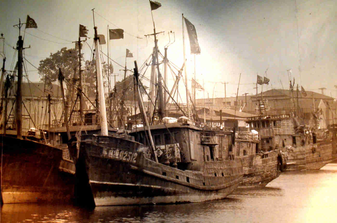 fishing trawlers in harbour