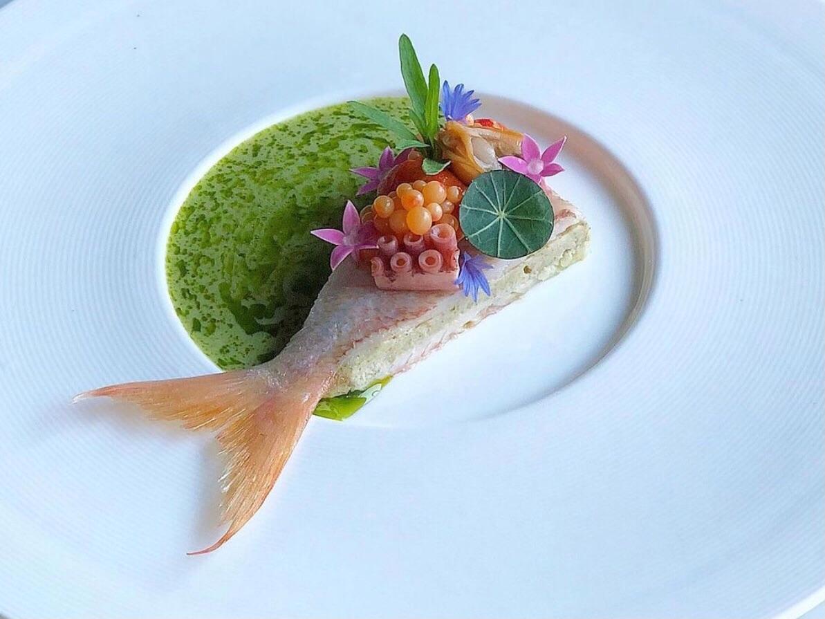 Sanat, Estetik ve Gastronomi
