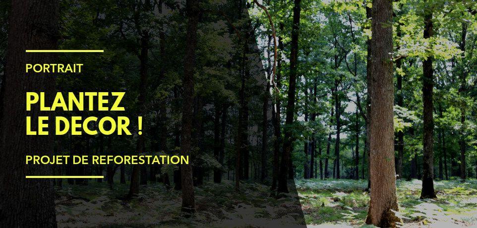 Exemple de Projet de Reforestation : Plantez le Décor