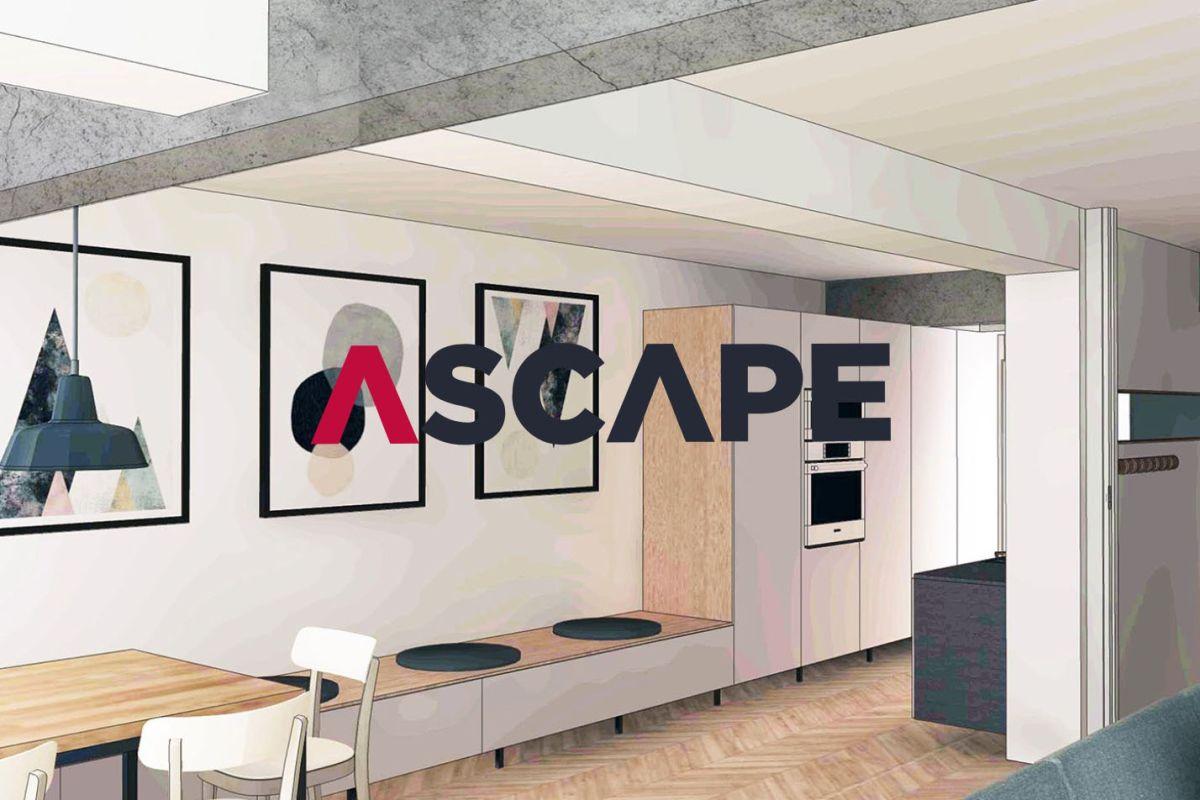 Ascape & Ivy Studios