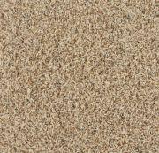 Carolina Sand