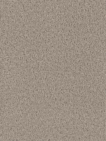 Dream Weaver Carpet Exceptional 945 Castle