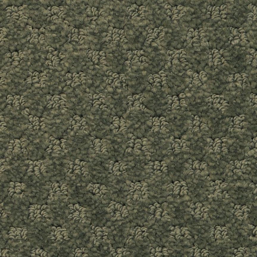 Masland Carpets & Rugs Southport 552 Aviary