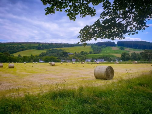 A Picturesque Farm in the Scottish Countryside