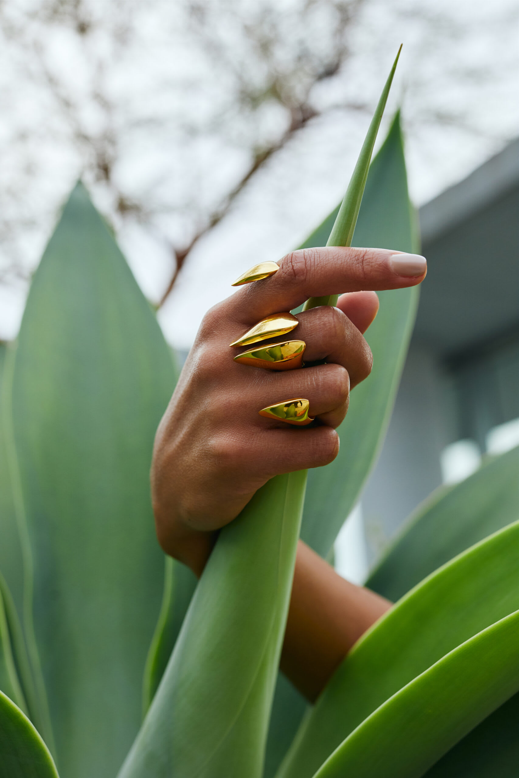 """""""Swarm Knuckle Ring by Soledad Lowe in nature close up"""""""