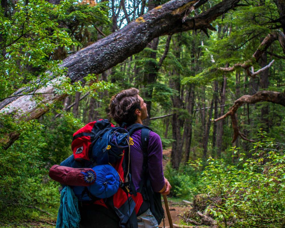 Mann mit einem Rucksack im Wald