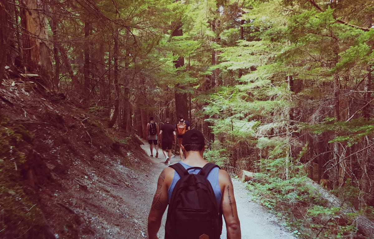 Group of travel buddy hiking in a Green Forest on a Hillside.