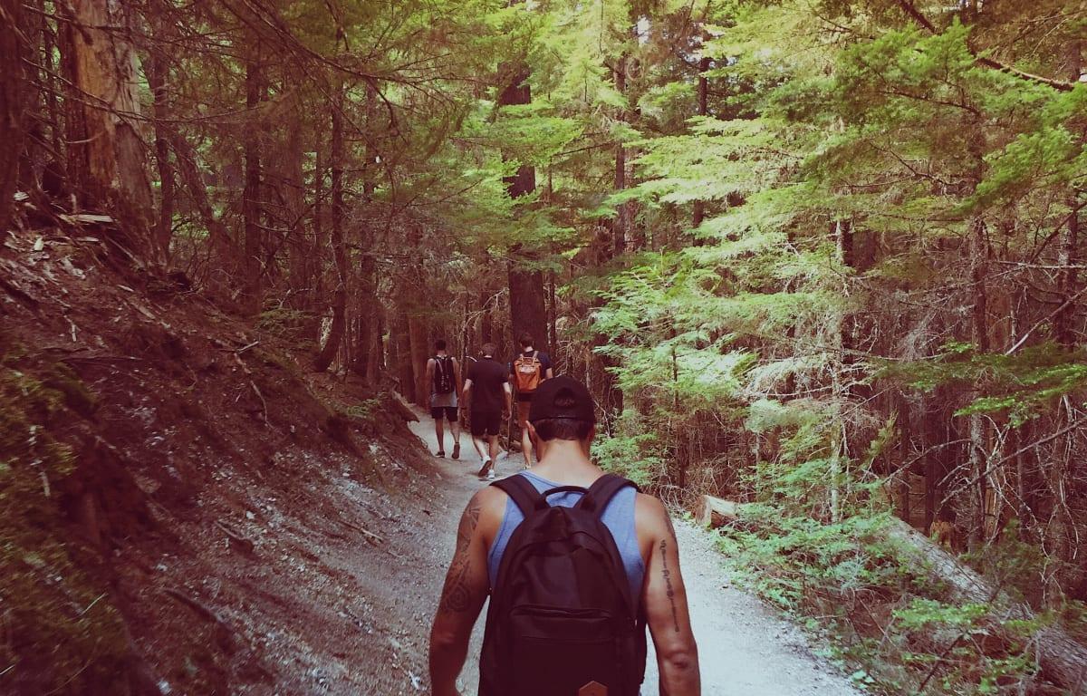 Gruppe von Reisepartnern wandern in einem grünen Wald an einem Abhang