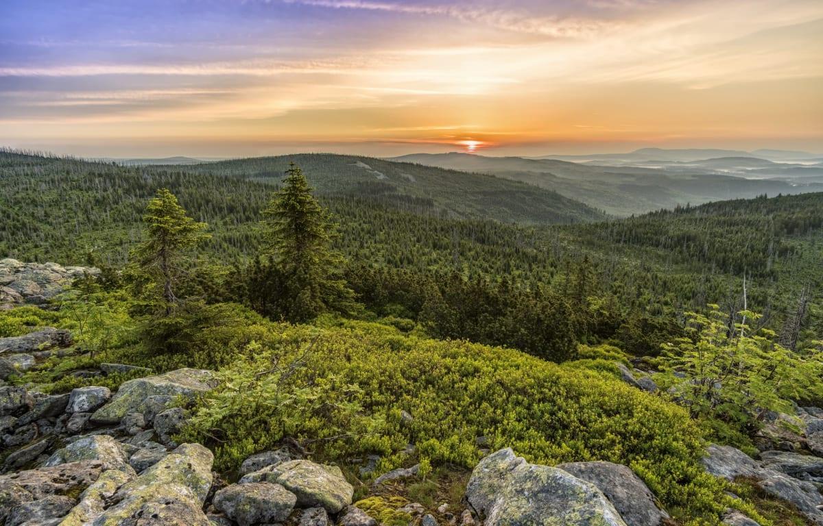 Der Lusen im Bayerischen Wald im Sonnenuntergang. Mit sattgrünen Wäldern und lila Himmel, im Vordergrund große Granit-Felsbrocken. Eine wirklich inspirierende Region.