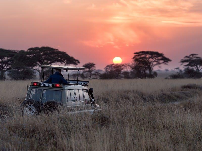 Safari Jeep in der Serengeti im Sonnenuntergang