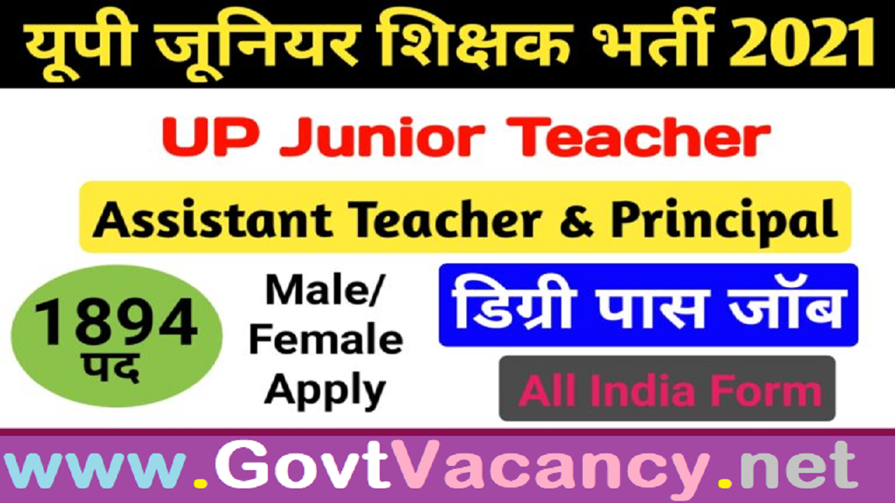 latest government vacancies in Uttar Pradesh for Teacher, Govt Vacancy for Teacher in UP, Govt Jobs for Graduates in UP