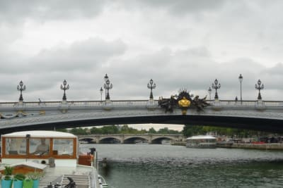 Brug over de Seine in Parijs