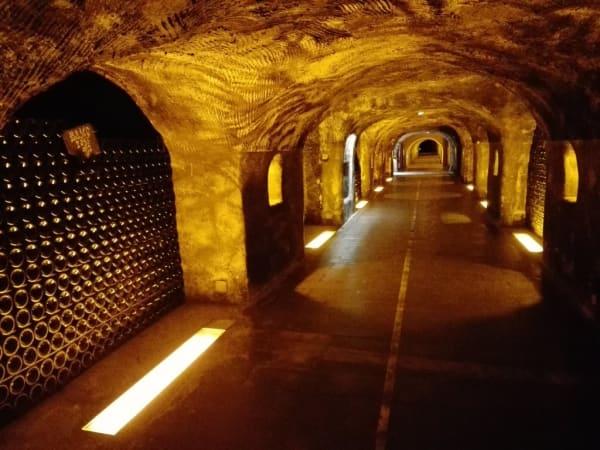 Bezoek champagnekelders