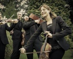 Quatuor Nemesia
