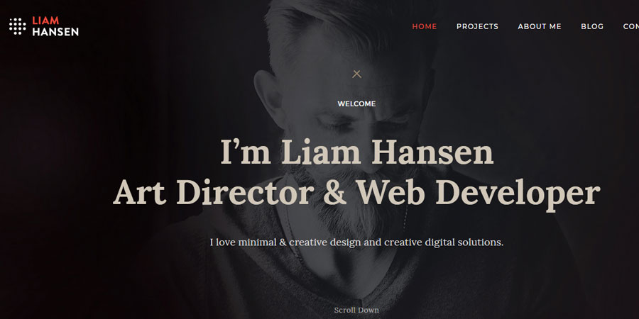 Liam Hansen Creative Freelancers Agency WordPress Theme
