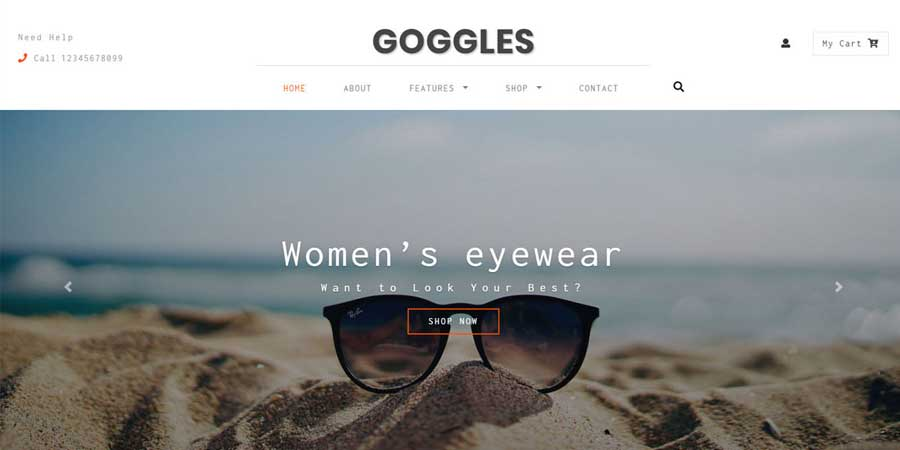 Goggles Ecommerce  Web Template