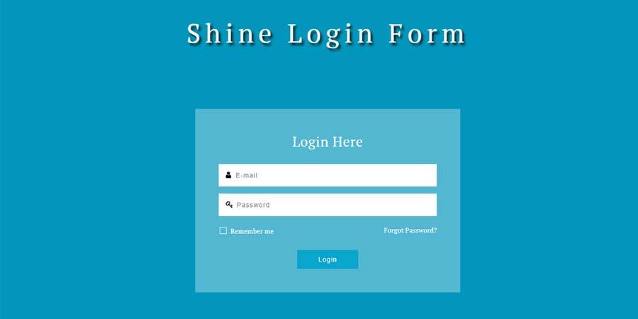 Shine Login Form