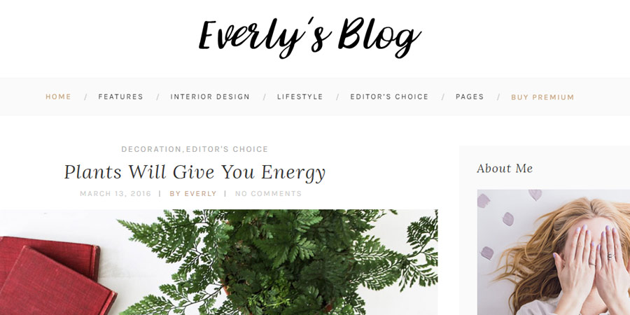 Everly Lite - Free WordPress Blog Theme
