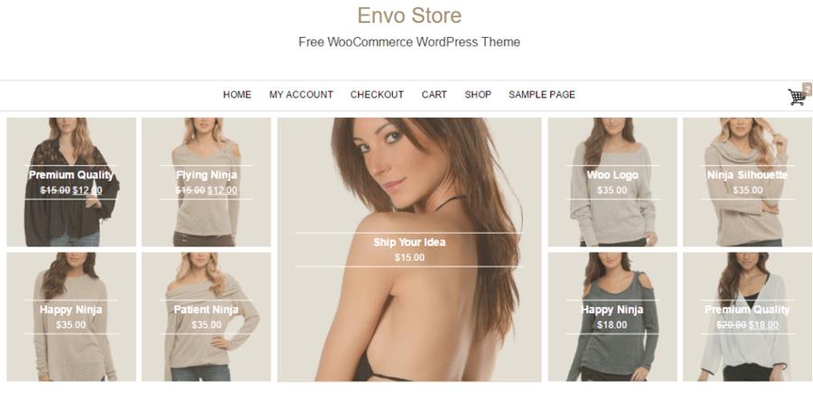 Envo Store