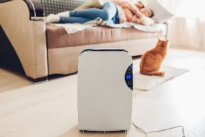 Best Humidifier for Condo