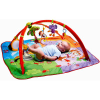 Tiny Love, Gymini Move and Play Activity Gym