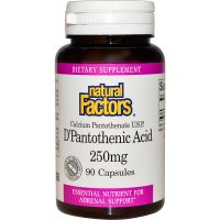 Natural Factors, D'Pantothenic Acid, 250 mg - 90 Capsules