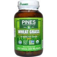 Pines International, Wheat Grass, 500 mg - 250 Tablets