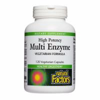 Natural Factors, Multi Enzyme, High Potency, Vegetarian Formula - 120 Veggie Caps