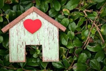 Приватизация дома в 2021 — сколько стоит, с чего начать, на дачном участке