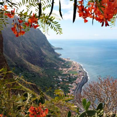 Blomsterön Madeira
