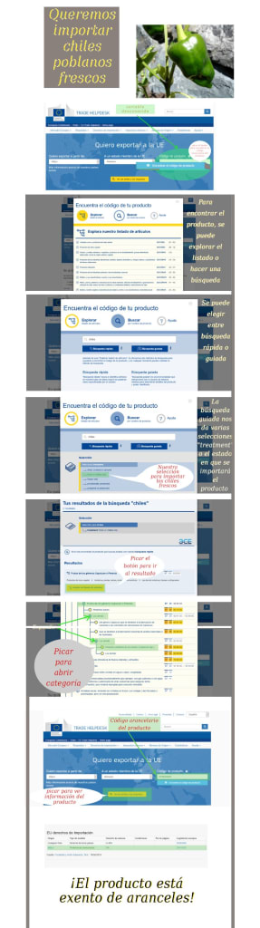 Infographic Search Form