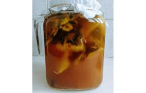 tepache fermentation