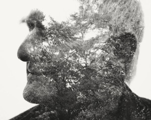 Visual Artwork: Troll by artist and creator Christoffer Relander