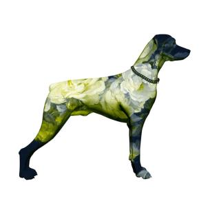 Visual Artwork: That Dog Won't Hunt by artist and creator Magnus Gjoen