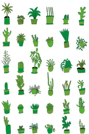 Visual Artwork: 36 Plants by artist and creator Anette Moi