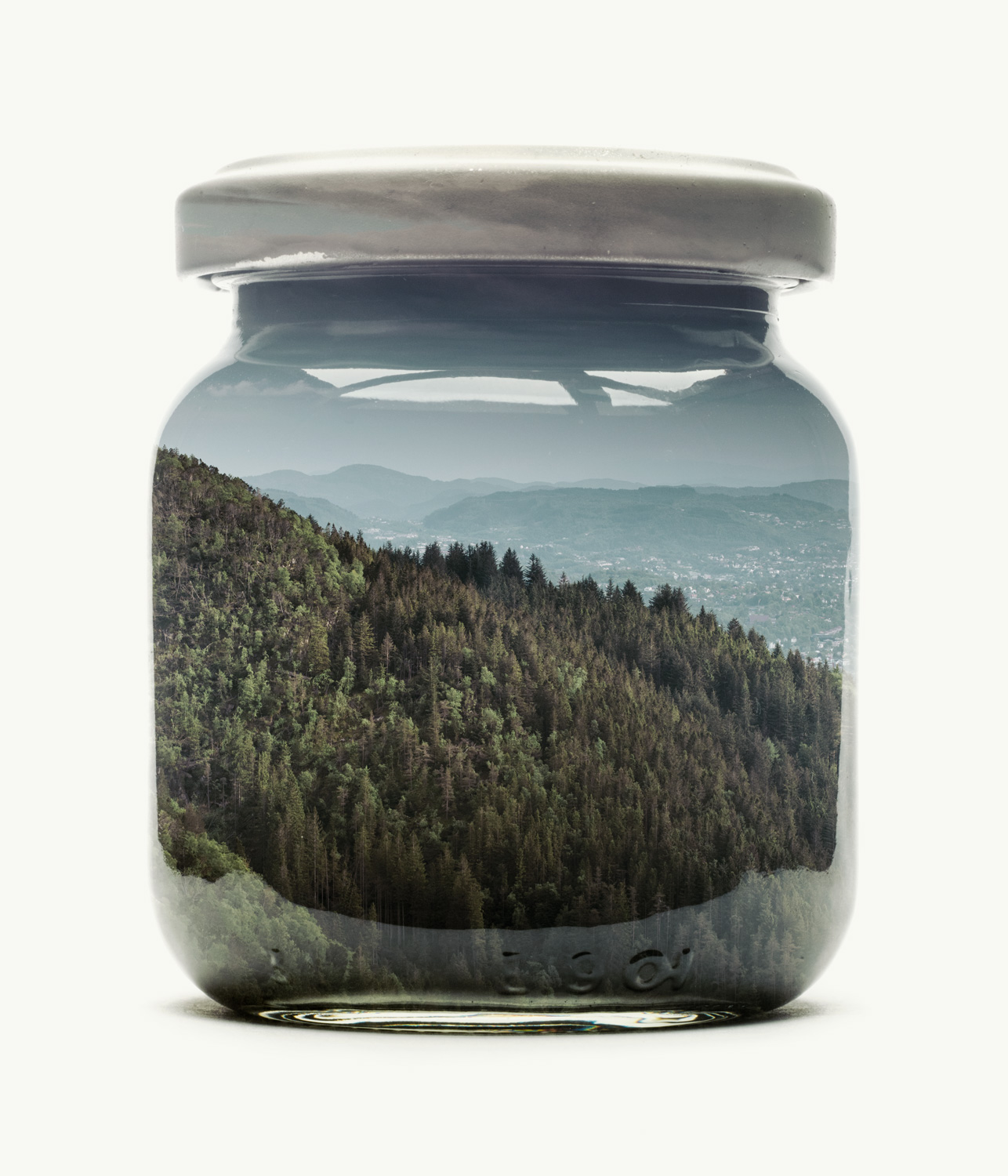 Visual Artwork: Bergen Edition - Jarred Mountain Forest by artist and creator Christoffer Relander