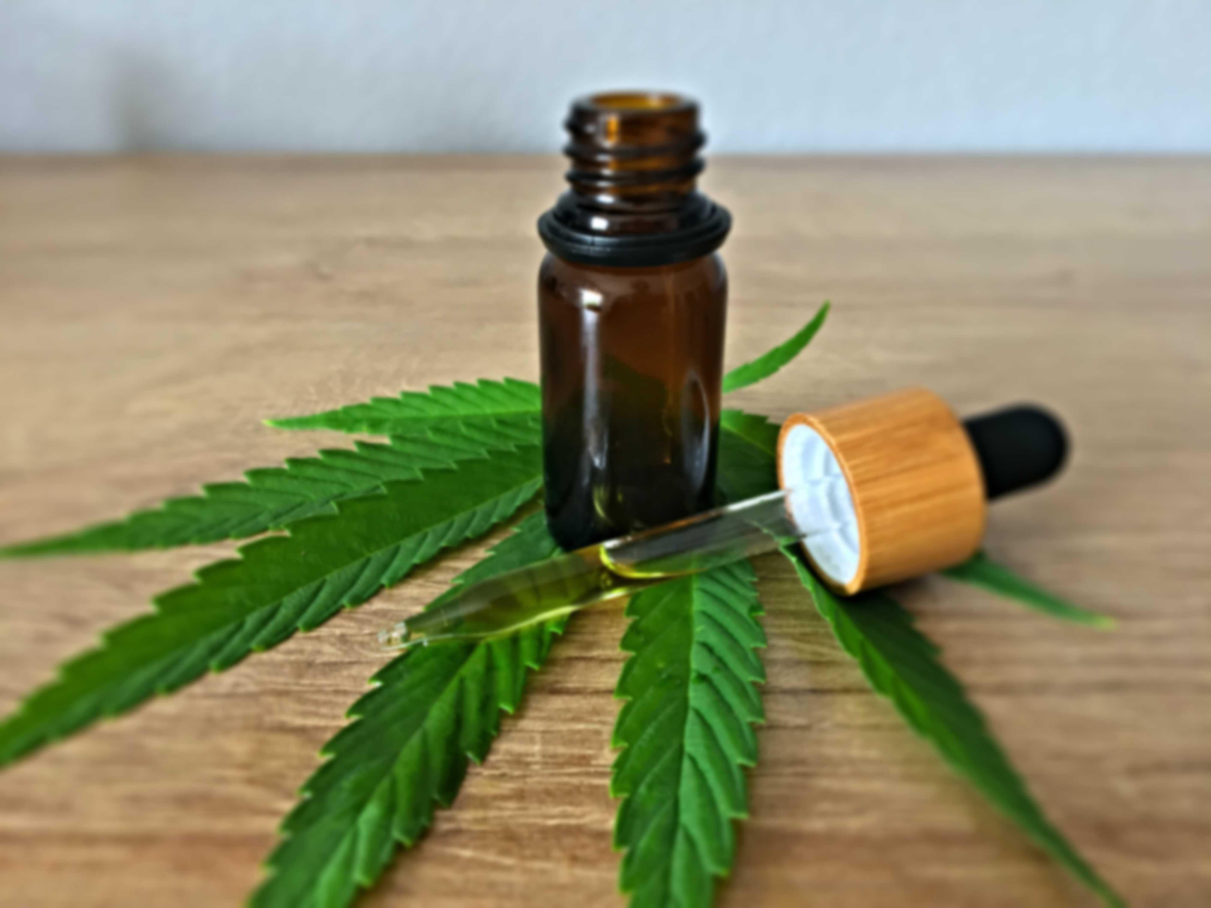 CBD Oil Endocannabinoid