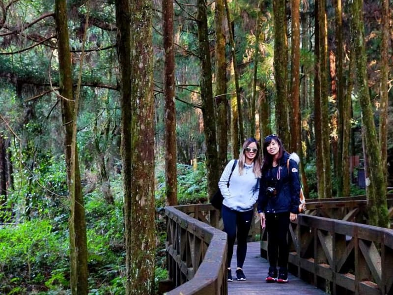 Day 3: Hike among ancient cypress trees and breath in the cool mountain air
