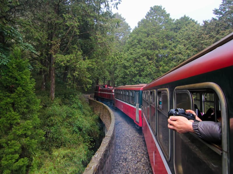 Take an early morning train ride through the scenic mountains on the Alishan Forest Railway