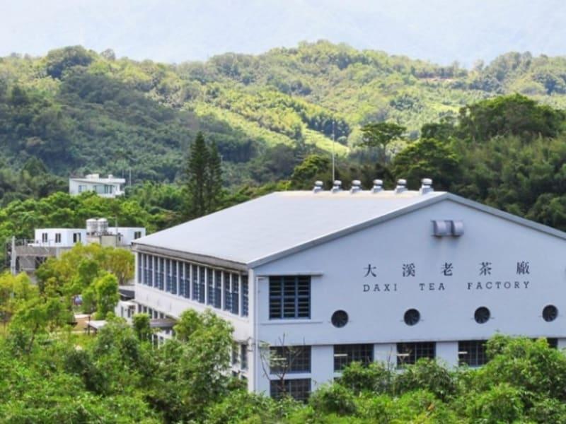 大渓の歴史ある製茶工場を訪れる