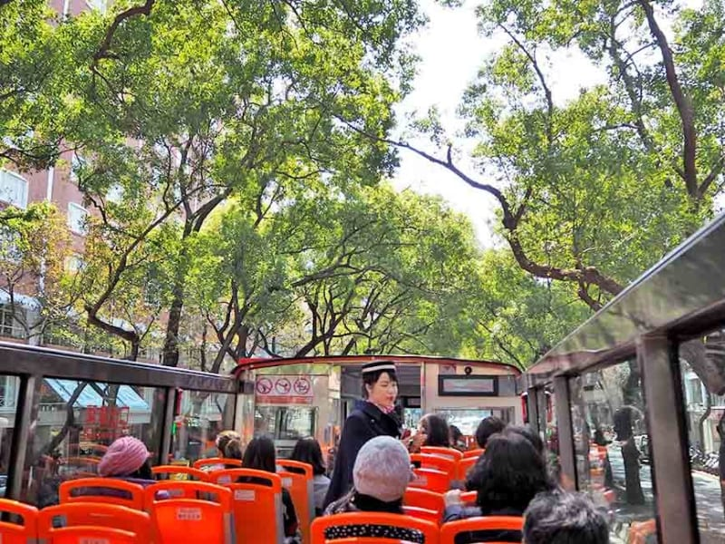 Ride the hop-on-hop-off bus with joy!!