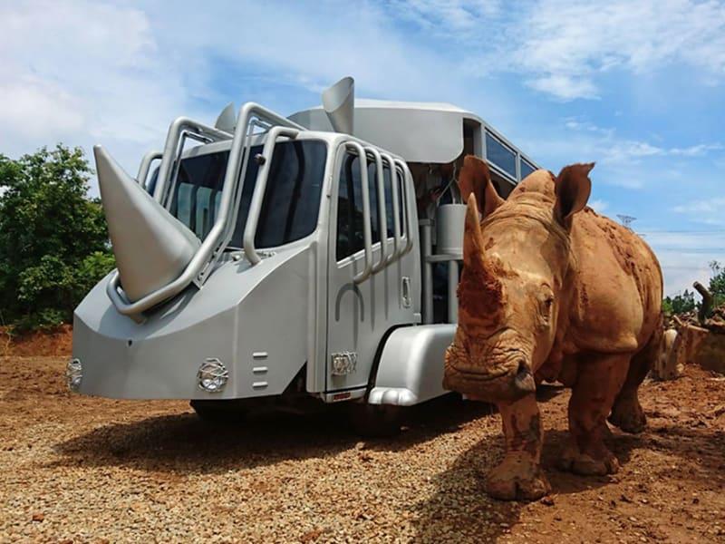 The Sudan Rhino Bus Exploration Sessions