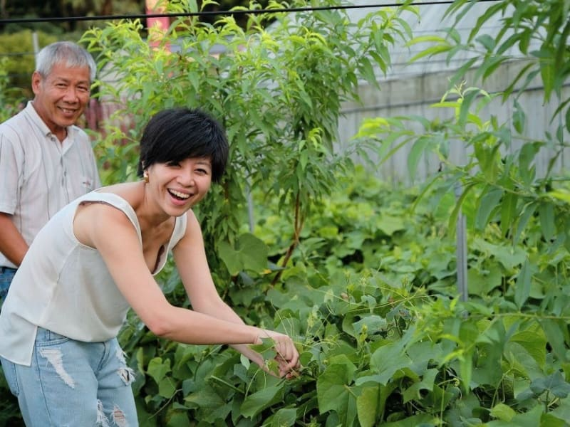 Tour an organic Daxi farm and learn about the community's local agriculture