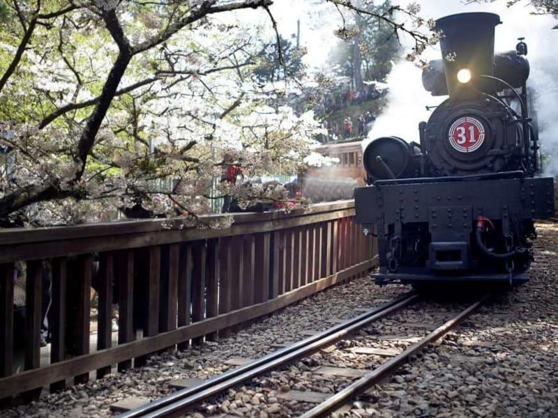 Alishan Train